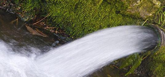 Scarico abusivo  di reflui fuori soglia in corsi d'acqua  e inquinamento ambientale. rapporto.